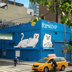 ripndip and ripndip with - photo #32